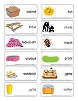 Word flashcards-Picnics