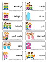 Word flashcards-Twins