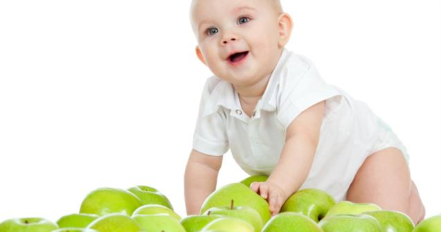 Apples - Babies and toddlers - Educatall