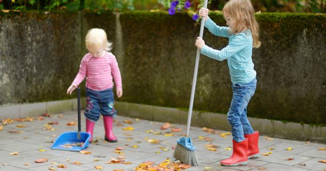 Cleaning your yard - Extra activities - Educatall
