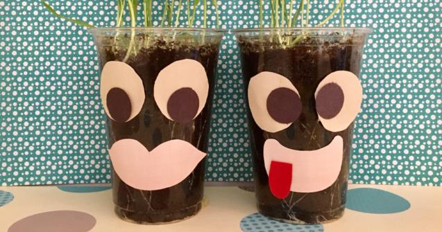 Grass Cup Faces - Arts and crafts - Educatall
