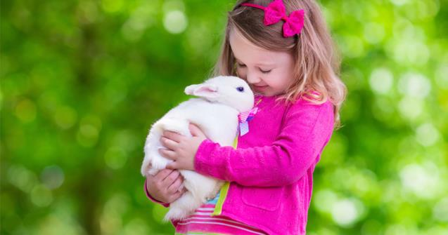 "Learn how to say ""rabbit"" in French - Extra activities - Educatall"
