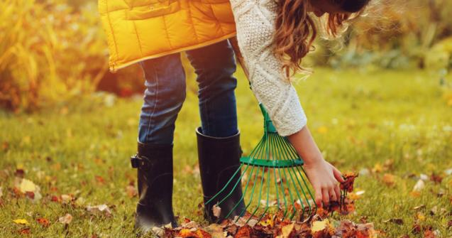 "Learn how to say ""rake"" in French - Extra activities - Educatall"