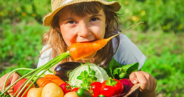 Let's harvest pictures of vegetables - Extra activities - Educatall