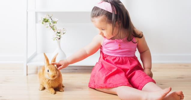My little bunny - Babies and toddlers - Educatall