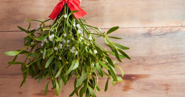 My mistletoe - Arts and crafts - Educatall