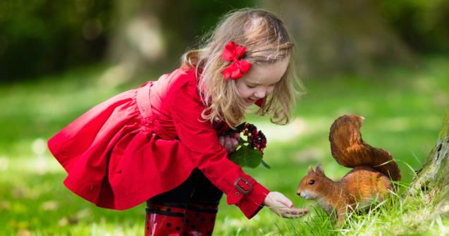 Squirrels - Babies and toddlers - Educatall
