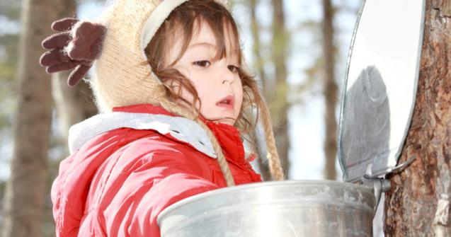 Sugar harvest time - Babies and toddlers - Educatall