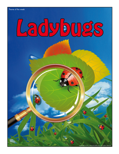 Thematic poster - Ladybugs